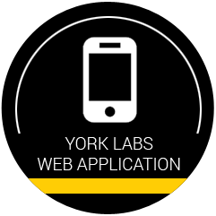 YORK Web Application